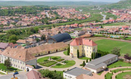 Castelul Arhiepiscopal